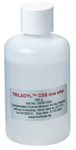トリラドル CSS