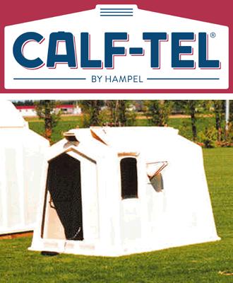 カーフテル(Calf-tel)